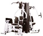 Prestige Gym with Leg Press (EXM3000LPS)